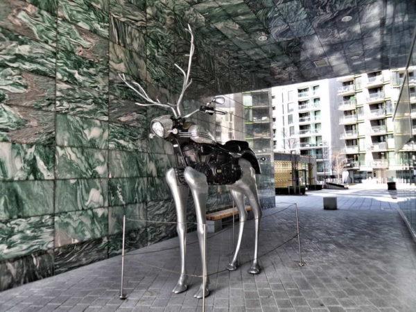 Oslo_Motor Deer