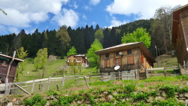 Rize_Ayder Valley (2)
