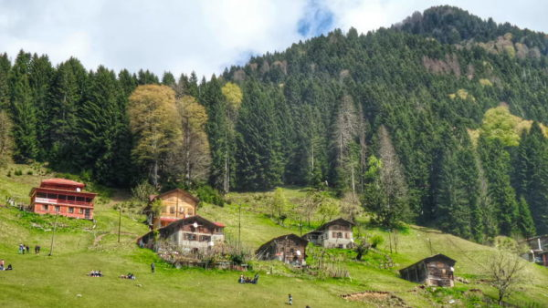 Rize_Ayder Valley (3)
