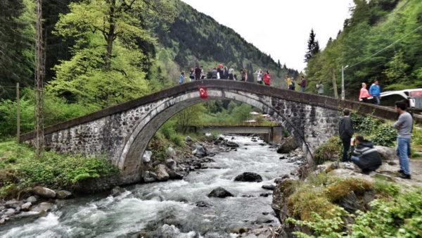Rize_Mikron Bridge (1)