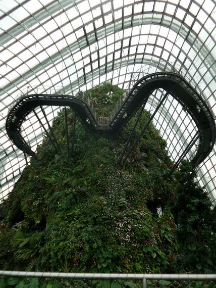Singapore_Cloud Forest