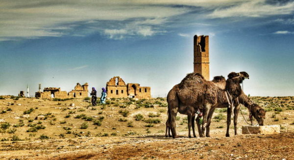 Harran_Mosque & Islam University