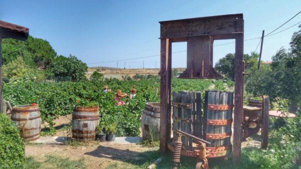 Bozcaada_winery