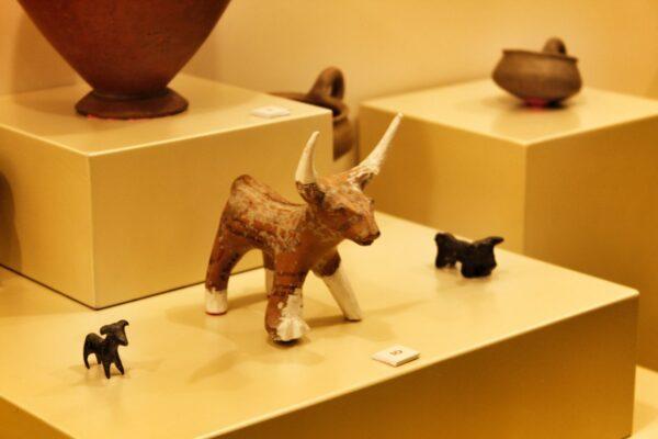 Amasya_Museum (8)